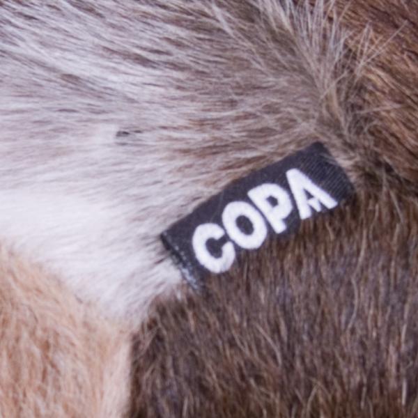COPA Cow Football 4